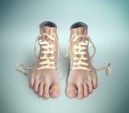 Paia delle scarpe Fotografia Stock