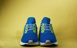 Paia delle scarpe da corsa semplici Immagine Stock