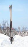 Paia dello sci nella neve che sta verticalmente Immagine Stock Libera da Diritti