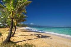 Paia strand, norr kust, Maui, Hawaii Royaltyfria Foton