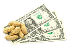 Paid in Peanuts Royalty Free Stock Photo