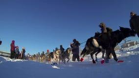 Paige Drobney alla ricerca del Yukon archivi video