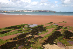 Paignton beach Royalty Free Stock Photo