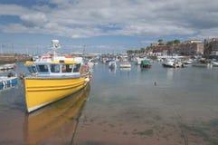Paignton hamn Devon UK royaltyfria foton