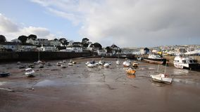 Paignton harbour Devon England uk stock footage