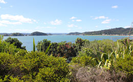 Paihia Beach New Zealand Royalty Free Stock Photography