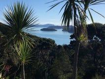 Paihia norra delen av ett land, Nya Zeeland Royaltyfri Foto
