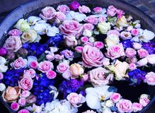 Pail of Flowers Floating in Water. A large rustic metal pail full of flowers floating in water. Roses, orchids, peonies, violets. Pink, blue, white, cream Royalty Free Stock Photos