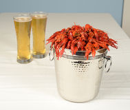 Pail full of river lobster served Stock Images