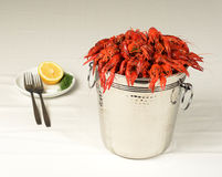 Pail full of river lobster served Royalty Free Stock Photos