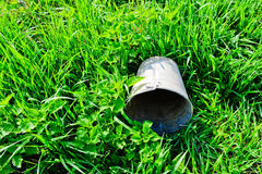 Pail lying on green grass. Day stock photo