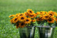 Pail of summer flowers. Blurred background, orange flowers and steel pails Stock Photos