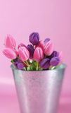 Pail of Tulips Royalty Free Stock Photos