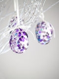 Pailette Eggs Stock Photo