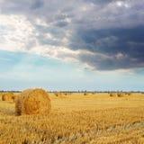 paille en petit pain sur le champ et bas cloouds dramatiques dans le coucher du soleil image stock