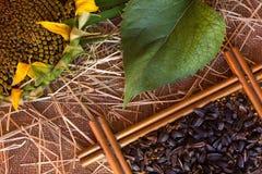 Paille, graines, graines de tournesol Images libres de droits