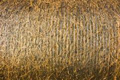 Paille pressée d'or jaune dans des balles Photo stock