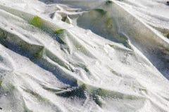 Paillis et concombre en plastique Image libre de droits