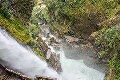 Pailon台尔蝙蝠鱼瀑布,厄瓜多尔 库存照片