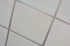 Painéis brancos para o teto suspendido Imagem de Stock Royalty Free