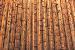 Painéis de madeira Imagem de Stock