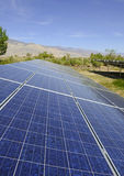 Painéis solares em um ambiente do deserto Foto de Stock