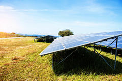 Painéis solares no gramado Fotos de Stock Royalty Free
