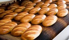 Pain à la boulangerie photographie stock libre de droits