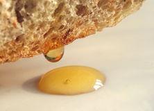 Pain avec du miel Image stock