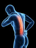 Pain in the back. A man having acute pain in the back Stock Photo