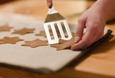 Pain d'épice de cuisson de femme Photo stock