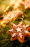 Pain d'épice de Noël Photographie stock libre de droits