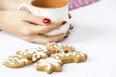 Pain d'épice d'hiver et tasse de thé Photographie stock