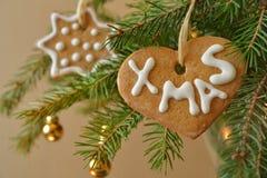 Pain d'épice sur un arbre de Noël Photos stock