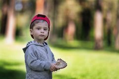 Pain dans la main d'un enfant Le garçon dans la forêt tient la nourriture dans sa main photographie stock