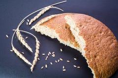 Pain de blé et blé Photos libres de droits