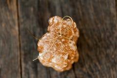 Pain de gingembre Photographie stock libre de droits