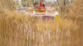 Pain et blé Photo stock