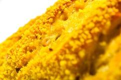 Pain français avec du maïs sur le plan rapproché blanc de fond Image libre de droits