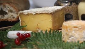 Pain français, fromages, moutarde et groseilles Image stock