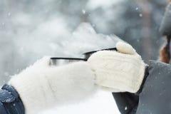 Pain grillé d'hiver Image stock