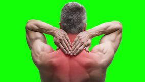 Pain in the neck, elderly muscular man with backache on green background, chroma key 4K video stock video footage