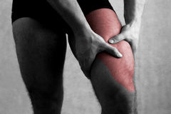 Pain quadriceps femoris Thigh pain legs fit muscle. Fitt Royalty Free Stock Images