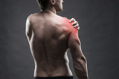 Pain in the shoulder. Muscular male body. Handsome bodybuilder posing on gray background. Low key close up studio shot Royalty Free Stock Photo