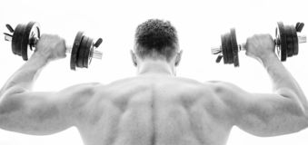 Pain is temporary, pride is forever. Sportsman with strong back and arms. Sport equipment. Bodybuilding sport. Sport. Lifestyle. Dumbbell exercise gym. Muscular royalty free stock photos