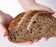 Pain, wheat-ears et mains Photographie stock libre de droits