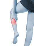 Pain in woman hamstring Stock Image
