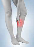 Pain in woman hamstring Royalty Free Stock Image