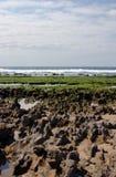 Paindane reef Stock Images