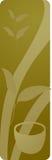 Painel da bebida do chá verde Imagens de Stock Royalty Free